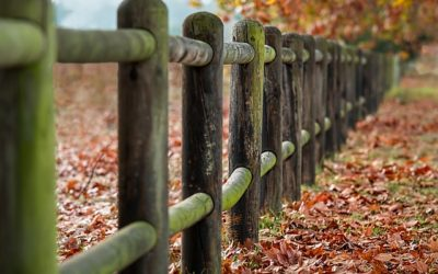 5 Fence Posts For Sexual Purity